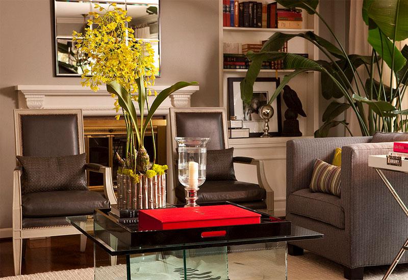 Description: nicolai palm tree decorating houseplants