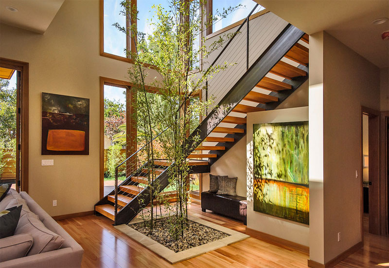 Description: indoor bamboo tree green plants decoration