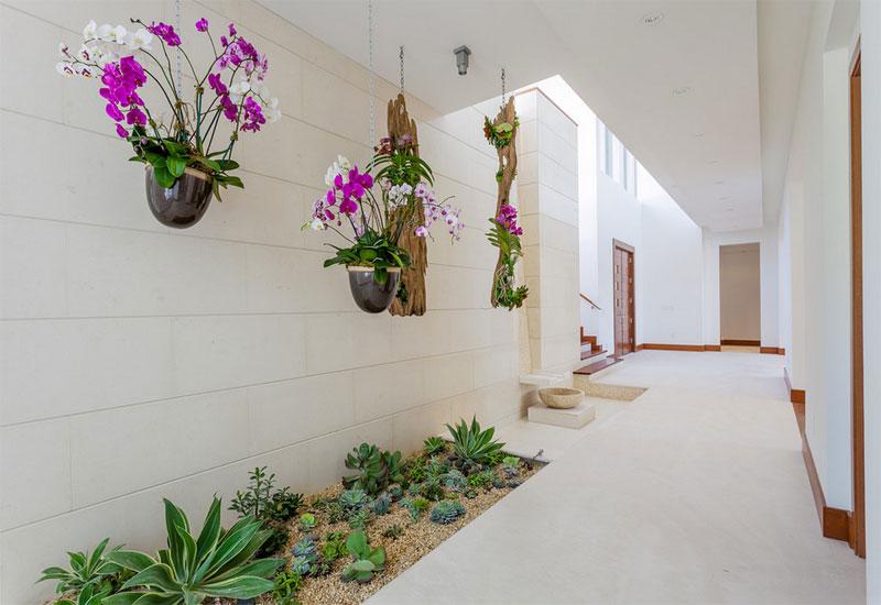 Description: pathway garden green plants decoration