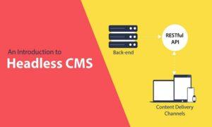 headless WordPress themes